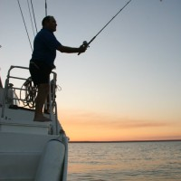 Fantastic fishing in the calm waters of the Apsley Strait